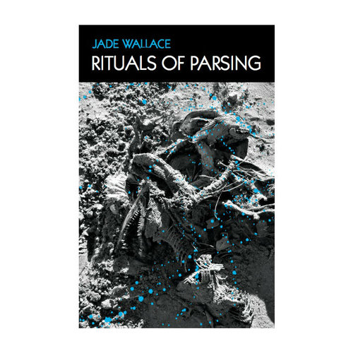 Rituals+of+Parsing+cover